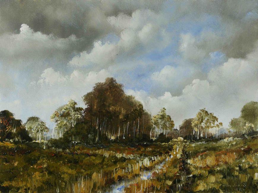 Winter Bogland