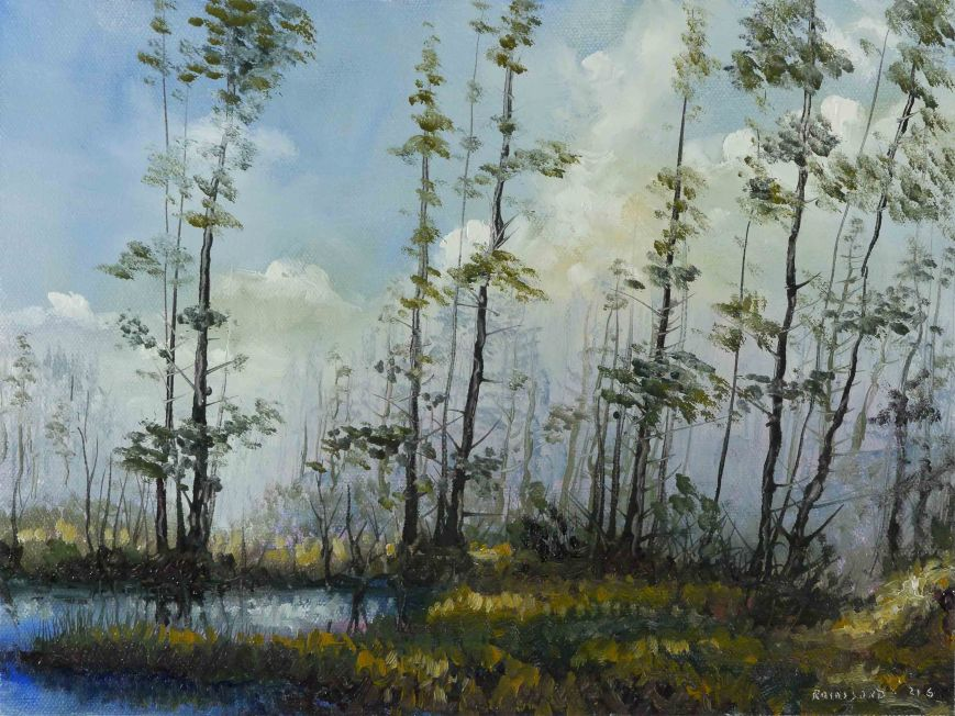 Riverbank Trees